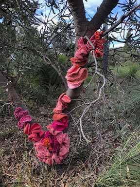 Jill OMeehan tree trail stirling (16).JP