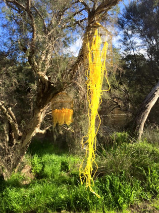 Jill OMeehan yellow jellyfish (4).jpg