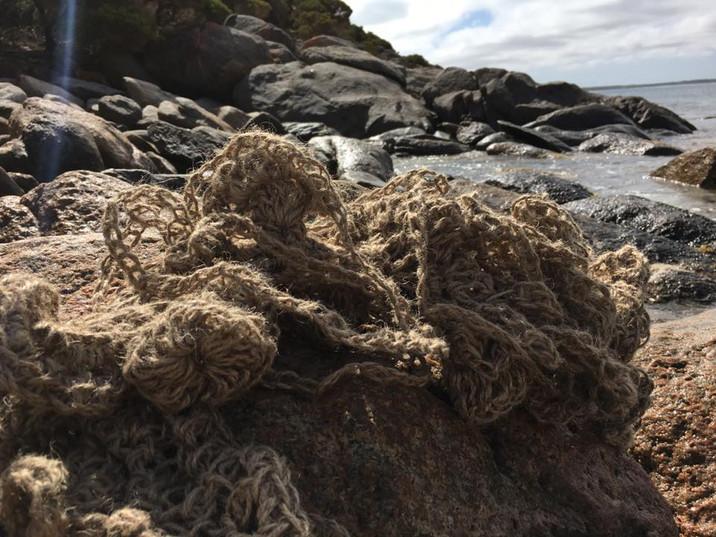 Jill Omeehan crochet forms marine (8).jp