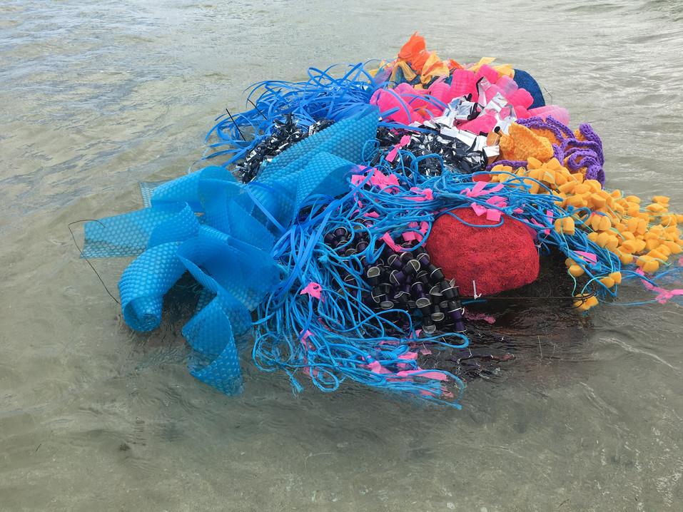 Jill OMeehan Sea Weed Beds 2017 (27).JPG