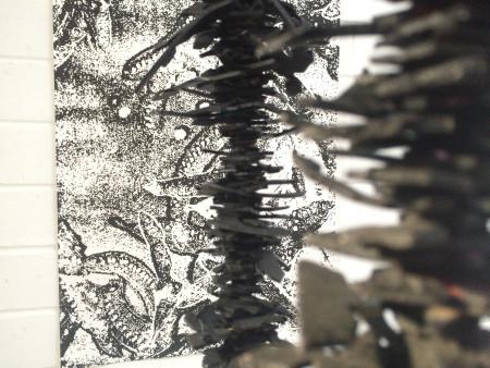 Jill OMeehan Seed Pod Installation Art (