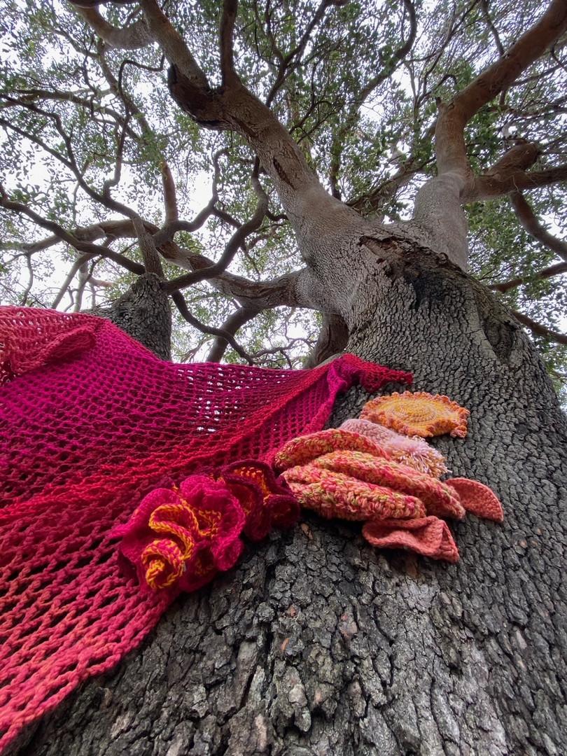 Jill OMeehan tree trail stirling (1).JPG