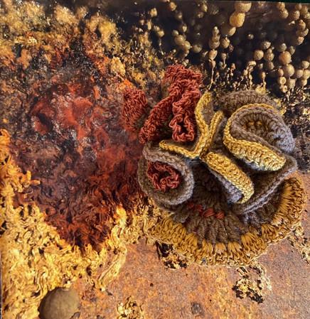 Jill OMeehan mixed media crochet photo (