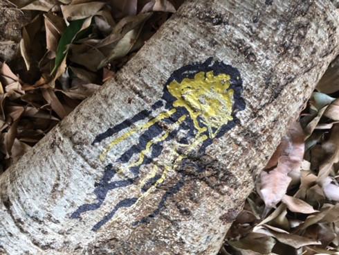 Jill OMeehan graffiti #Y22 (4).JPG