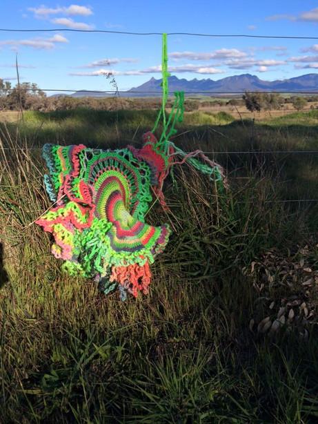 Jill OMeehan crochet forms (4).jpg