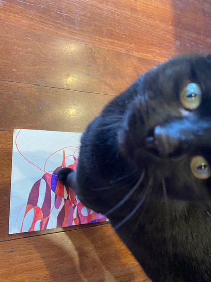 Jill OMeehan studio cats (2).JPG