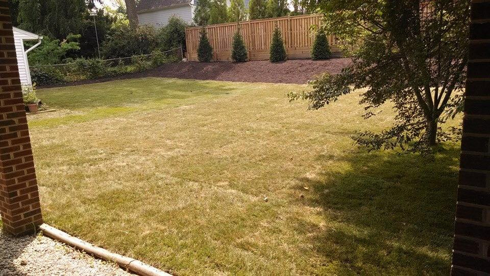 backyard grade job complete