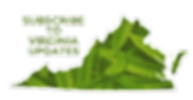 Virginia Marijuana News