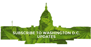 Washington D.C. Marijuana News