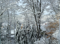 L'hiver au studio