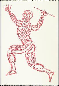 muscle typogram