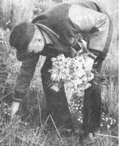 man picking flowers