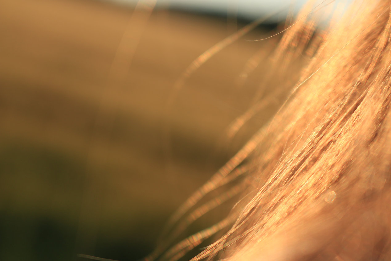 blonde-blur-close-up-7437.jpg
