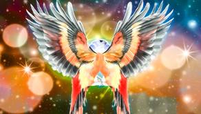 'Superbird Demos' Vol. 1!