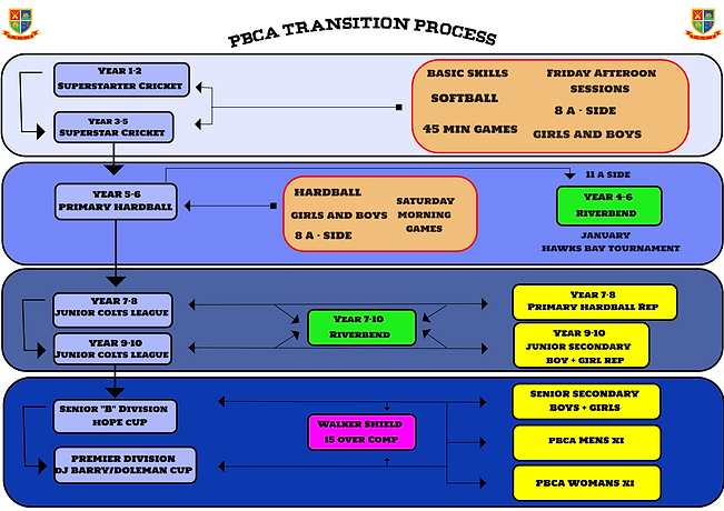 transition process new.png