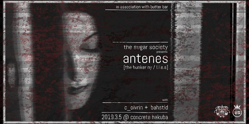 The Sugar Society presents Antenes