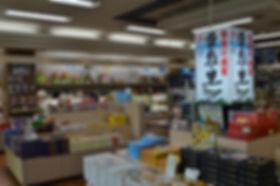 shirakaba_1.JPG