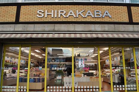 shirakaba_2.JPG