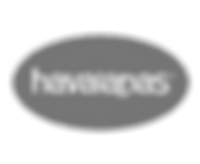 havaianas-removebg-preview (1).png