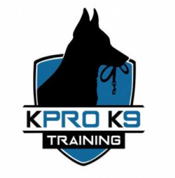 K9 Training.jpg