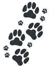 dog_paws_large.jpg
