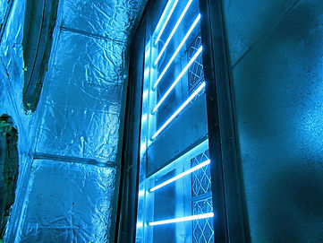 UV light for Infection Killing and Death with Dr. Kenneth Benjamin Hughes
