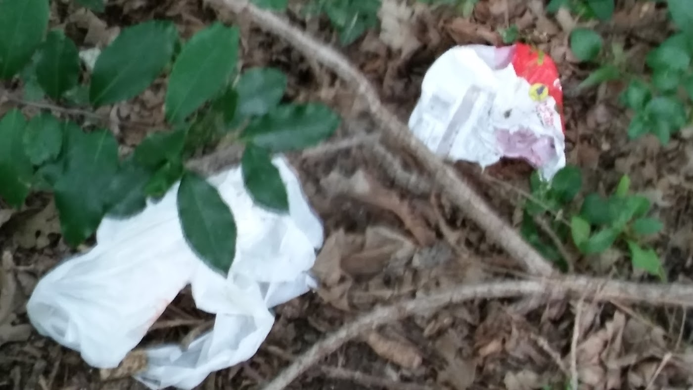UUC Turtle Creek Cleanup Litter 004