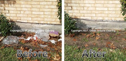 Before and After - Litter