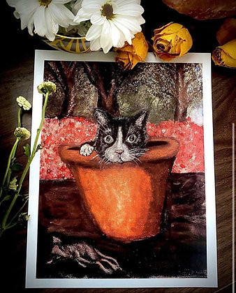 Black and White Cat in a Clay Pot With Flowers