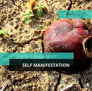 Transcendence-Self-Manifestation.png