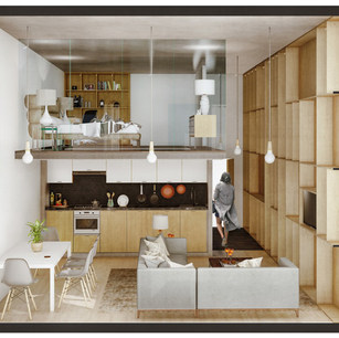 Proposed Apartment Typology