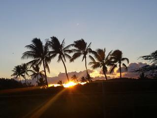 Moving to Hawaii Saved My Life