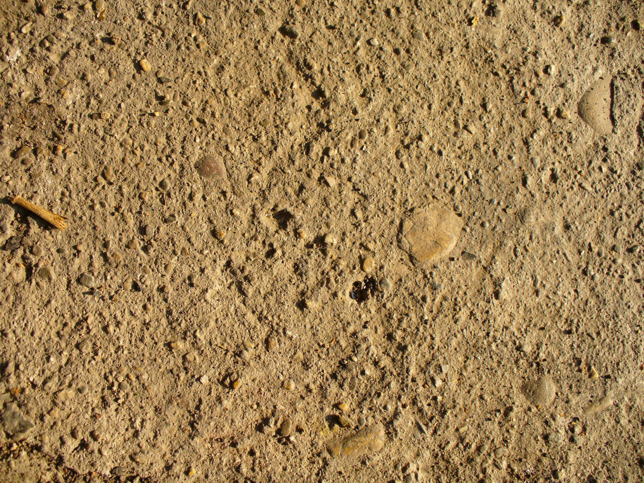 soil-1190627