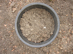 soil-and-bucket-3-1541831