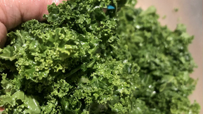 Kale Massage Technique and six fun tips!