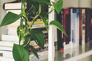 3-estante-de-aco-blur-bookcase-books-boo