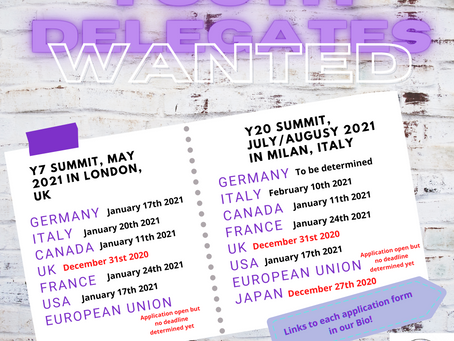 Youth Delegates Wanted!