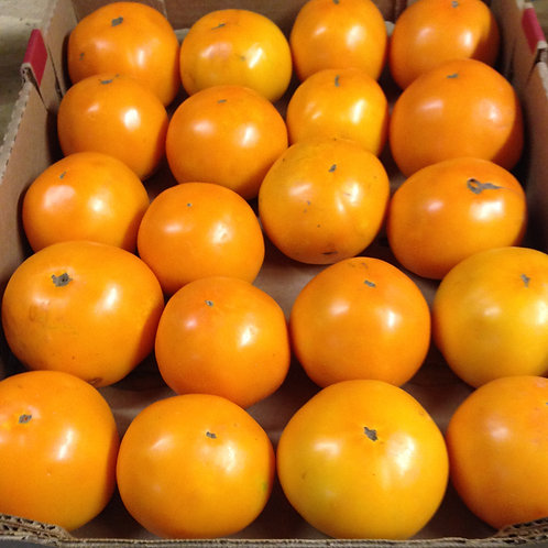 Carolina Gold Tomatoes (1 lb)