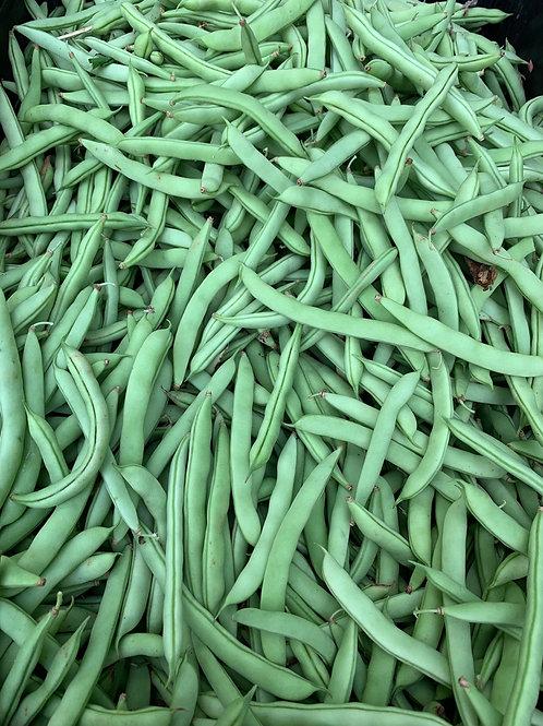 Bushel of half runner beans