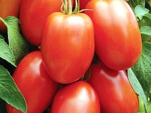 Roma Tomatoes (1 lb)