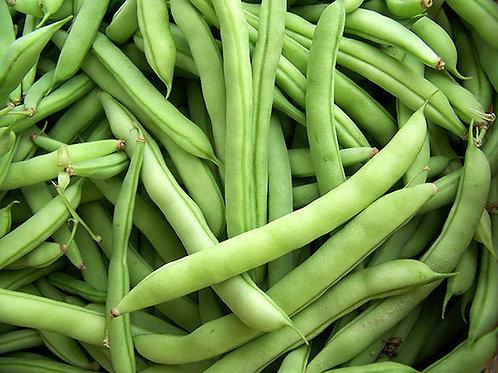 Half Runner Green Beans (String) (1 lb)