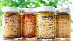 Organic Mustards Collection