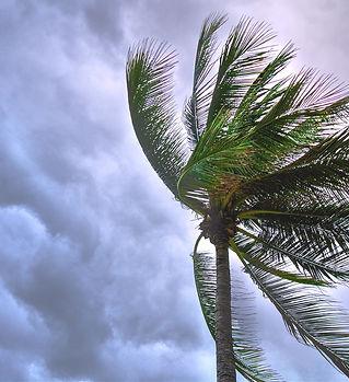 beach-beautiful-cloudy-1030320.jpg