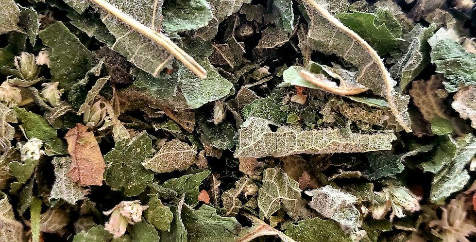 Organic Boneset