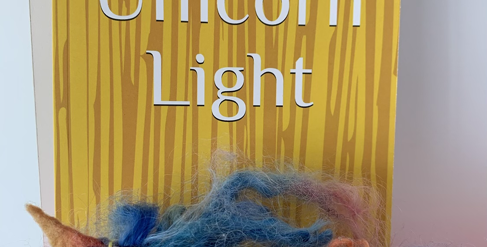 Unicorn Light Book by Amy Williams