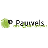 Silver_Pauwels.png