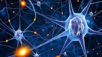 Neuroleadership - Was ist das?