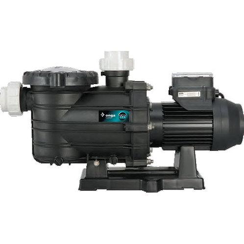 Pentair ECO 800 Pool Pump