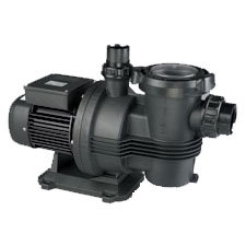 Davey Typhoon Cyclone Pool Pump