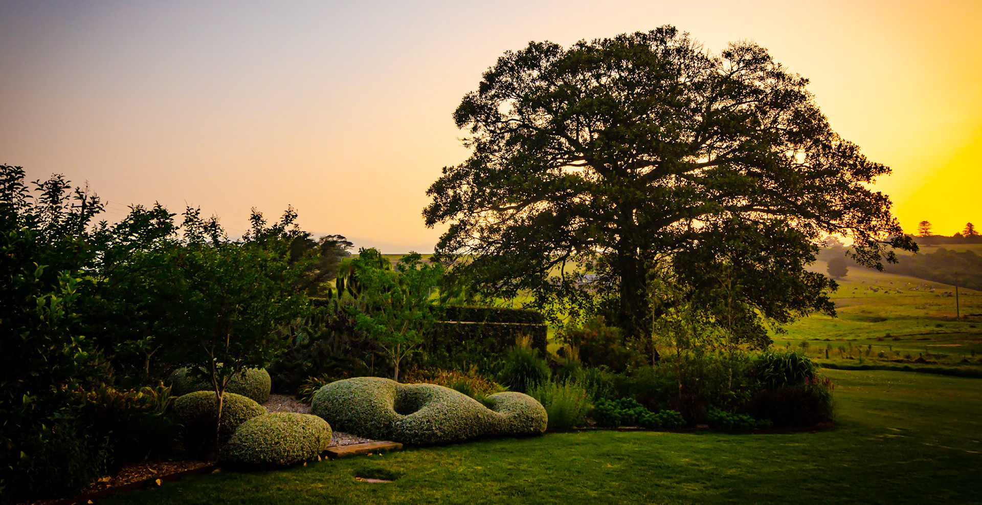 Sunset over the Perennial beds and lawn.